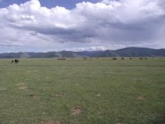 Mongolie août 2010 314.JPG